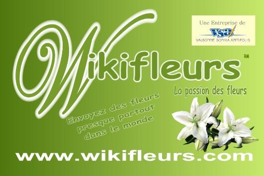 Wikifleurs, la passion des fleurs