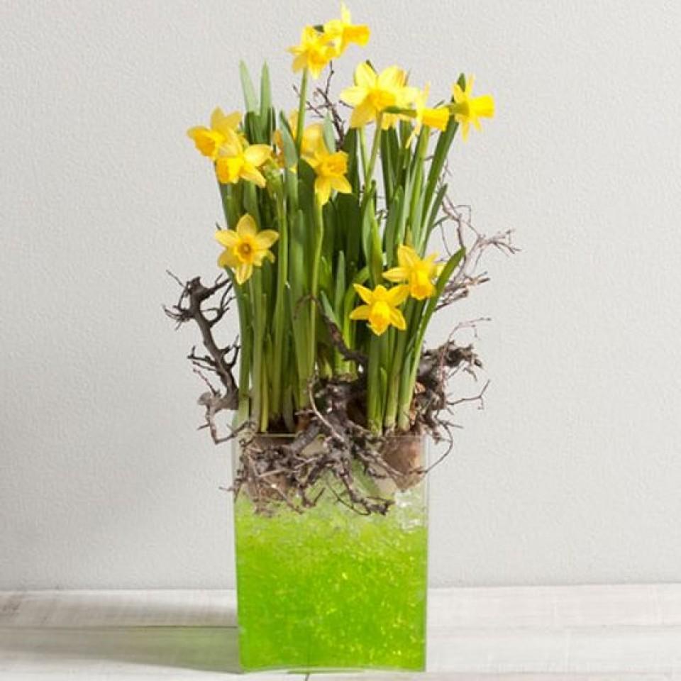 Fleurs f te des grand m res 2014 catalogue fleurswikifleurs votre fleuriste en ligne - Catalogue de fleurs gratuit ...